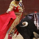 matador_bullfighting