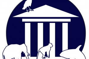 Animals Today – January 20, 2013 Steven M. Wise & the Nonhuman Rights Project