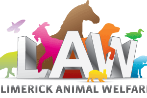 Animals Today November 10, 2013 – Greyhounds, horses and animal welfare in Ireland.