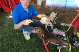 Animals Today, September 28, 2014:  Humane Education featuring Bob Ferber
