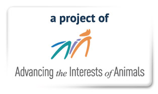 Advancing the Interests of Animals