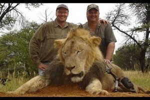Dr. Lori Kirshner's opening statement: The Killing of Cecil