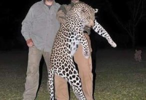 Animals Today Election Report: The hunting activities of Donald Trump's sons.