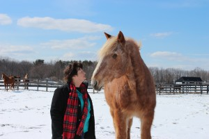 Photo of Susan Wagner, President of Equine Advocates with Mariclare, a former PMU mare rescued by Equine Advocates, along with 45 other mares from a PMU factory farm in Manitoba, Canada. Most of those mares were pregnant at the time of their rescue. Now PMU production has moved almost entirely from Canada to China, a fact of which most women, their doctors and the American public, in general, are not yet aware.