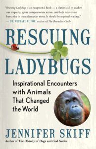 The book, Rescuing Ladybugs, by Jennifer Skiff.