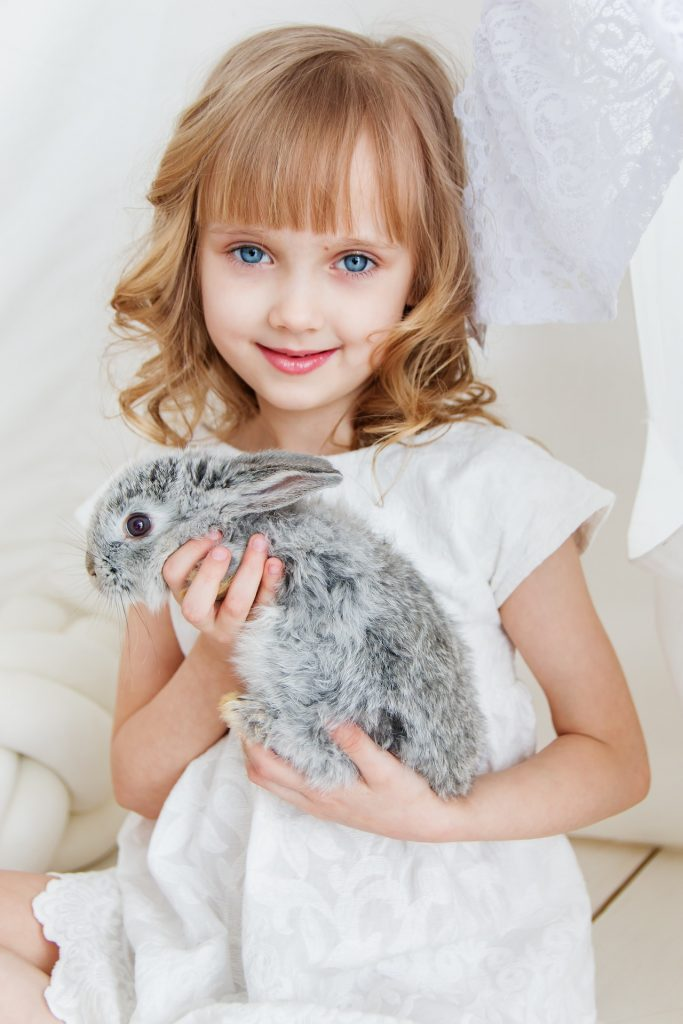 Being a foster parent for animals