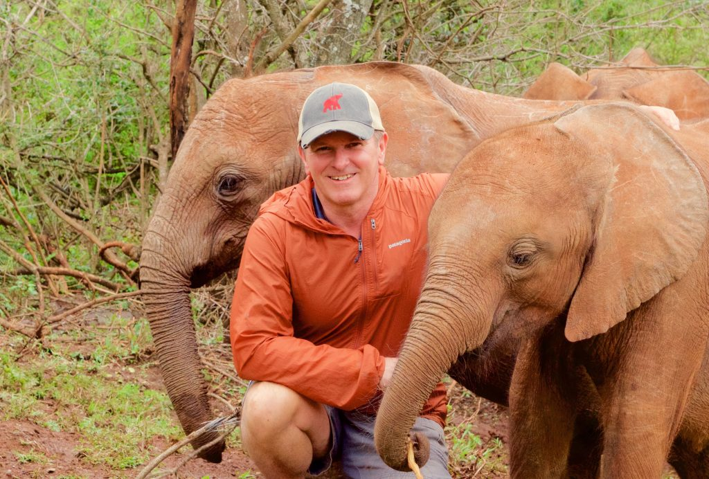 The Challenges African Elephants face