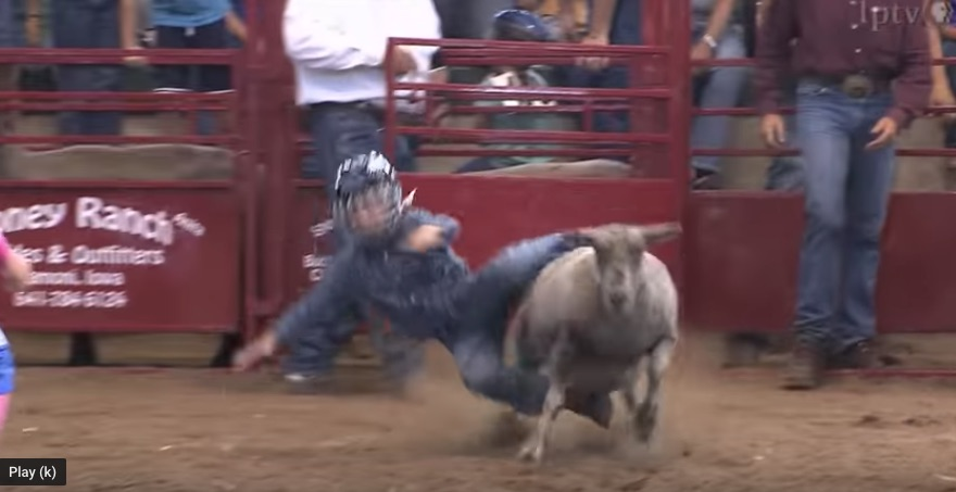 What is Mutton busting?