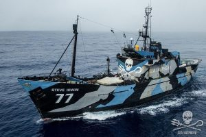 What is the purpose of the Sea Shepherd?