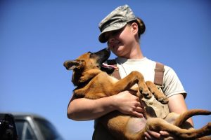 Tips on adopting formerly abused animals