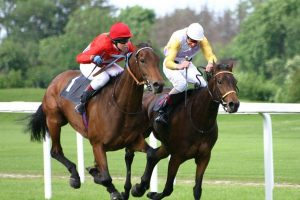 Why horse racing should be banned