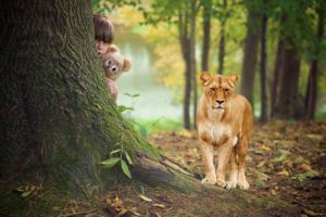 Why exotic animals should not be pets